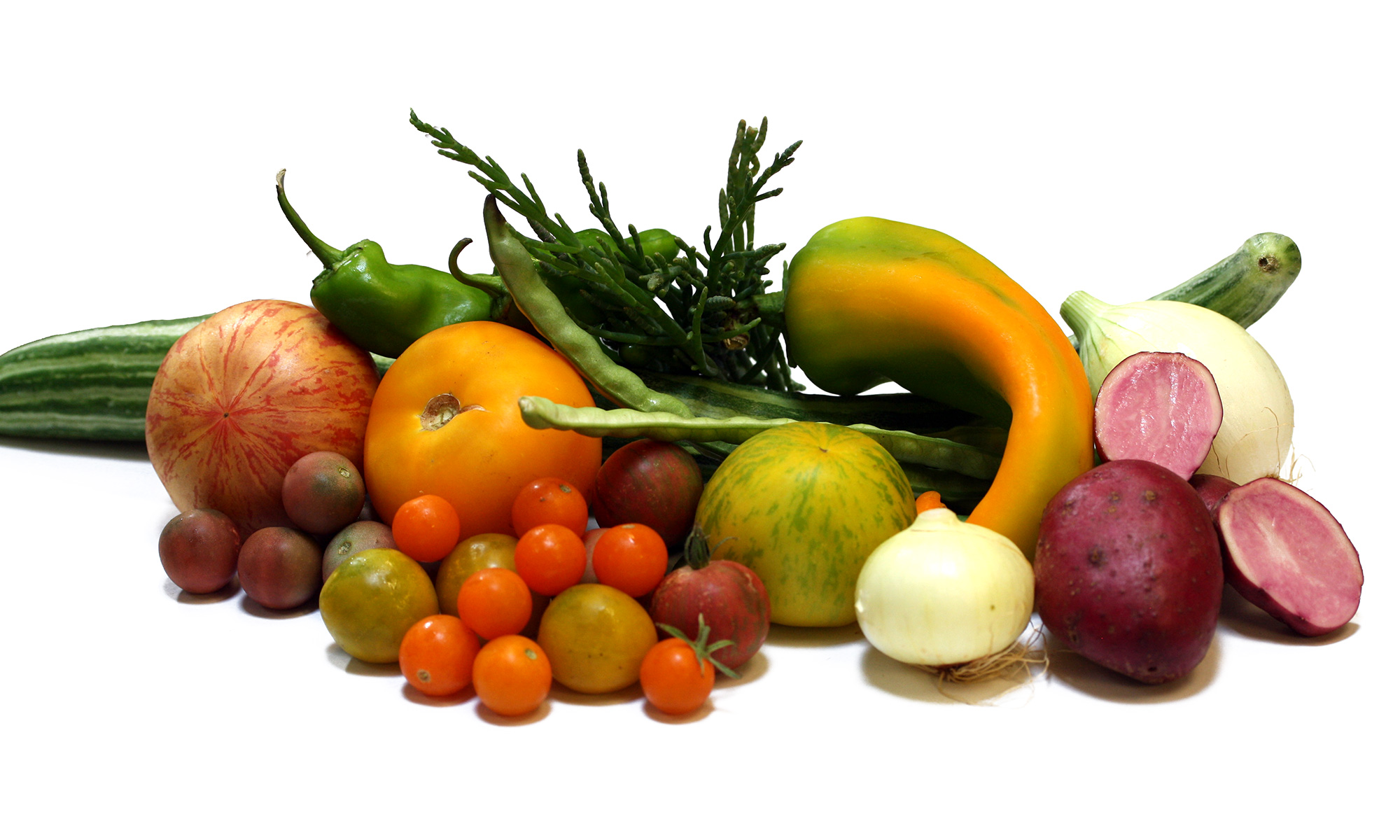 main-page-vegetables2