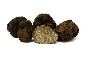 oregon-black-truffle